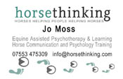 Horse Thinking Business Cards